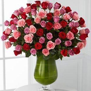 Denvers Best Roses